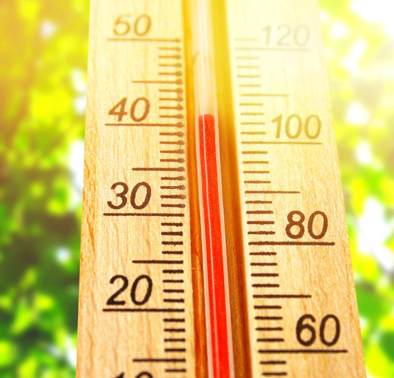 The effects of heatwaves and how shading can help keep us cool